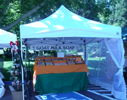Colestin Caprines Goat Milk Soap booth - Ashland July 4th, 2010