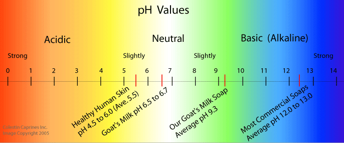 pH Values: Goat's Milk Soap is closer to Skin pH